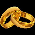 Logo Splash Promessi Sposi